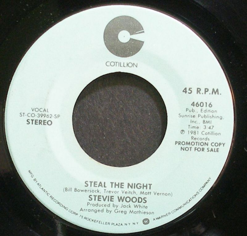 Stevie Woods - Steal The Night